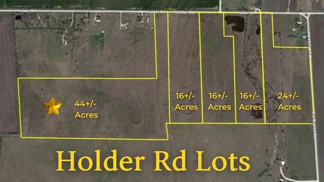 TBD L1 Holder Road, Waxahachie, TX 75165 (MLS #14683117) :: The Star Team | Rogers Healy and Associates