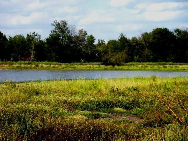 1 Vz Cr 1701, Grand Saline, TX 75140 (MLS #13100236) :: Steve Grant Real Estate