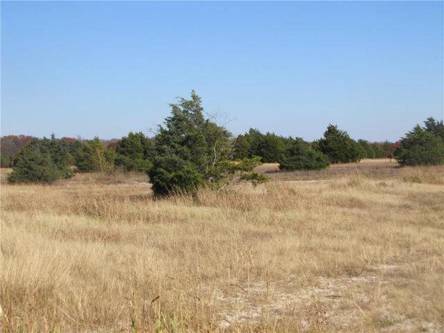 1220 Lynn Way, Waxahachie, TX 75165 (MLS #13345843) :: The Heyl Group at Keller Williams