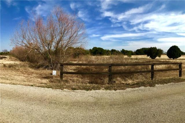 12000 Hcr 1231 / Star Ranch Court, Whitney, TX 76692 (MLS #13519767) :: Ann Carr Real Estate
