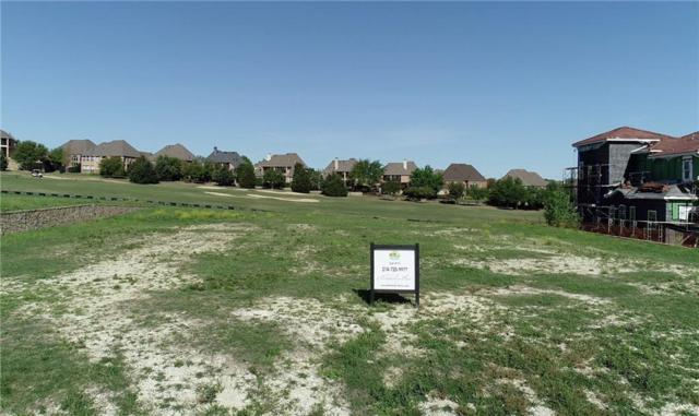 807 Tacoma Drive, Allen, TX 75013 (MLS #13524215) :: The Mitchell Group