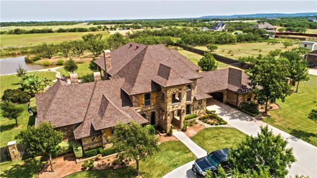 341 Southwind Circle, Abilene, TX 79602 (MLS #13585106) :: Team Hodnett