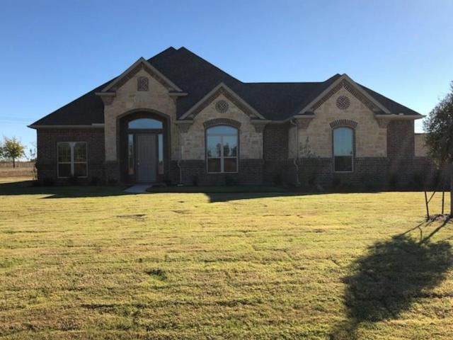 141 Denali Way, Waxahachie, TX 75167 (MLS #13689460) :: Team Hodnett