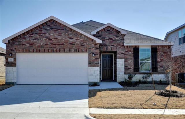 1736 Trace Drive, Aubrey, TX 76227 (MLS #13697478) :: Team Hodnett