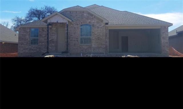 1508 Oak Tree Drive, Denton, TX 76209 (MLS #13747071) :: Team Hodnett