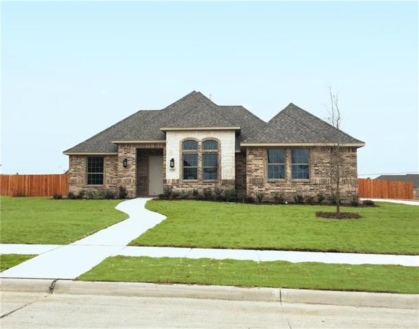 124 Diamond Lane, Waxahachie, TX 75165 (MLS #13749559) :: Team Hodnett