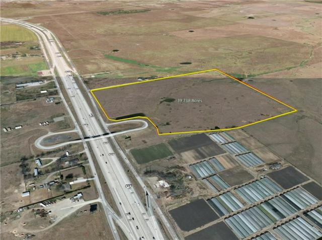 40 AC Interstate 45 Highway, Rice, TX 75155 (MLS #13751432) :: The Chad Smith Team