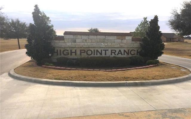 157 Eagle Pass, Royse City, TX 75189 (MLS #13765898) :: Team Hodnett