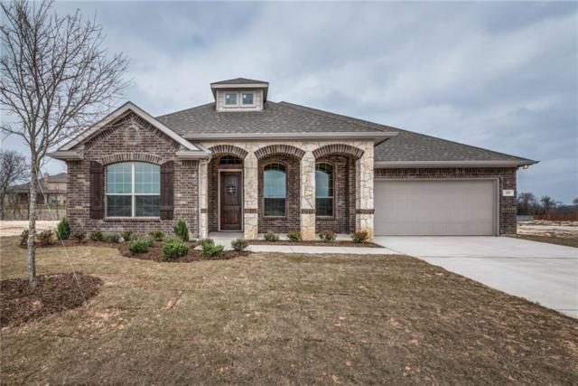 229 White Willow Way, Midlothian, TX 76065 (MLS #13773961) :: Team Hodnett