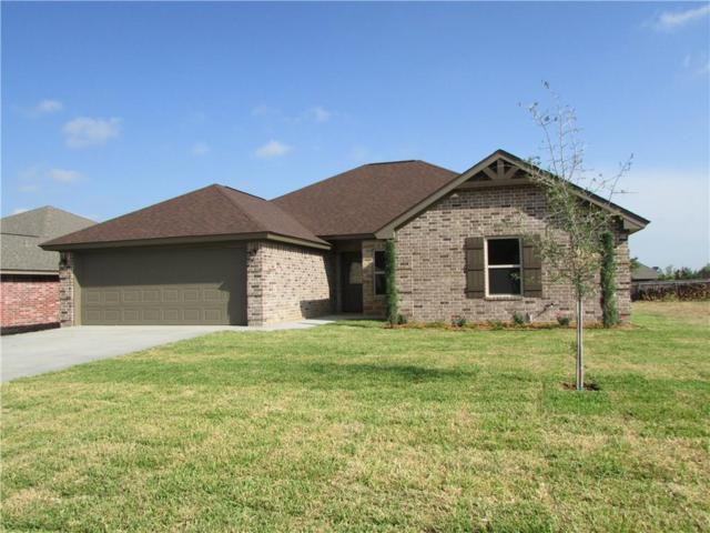 319 Midnight Shadow, Stephenville, TX 76401 (MLS #13783834) :: Magnolia Realty
