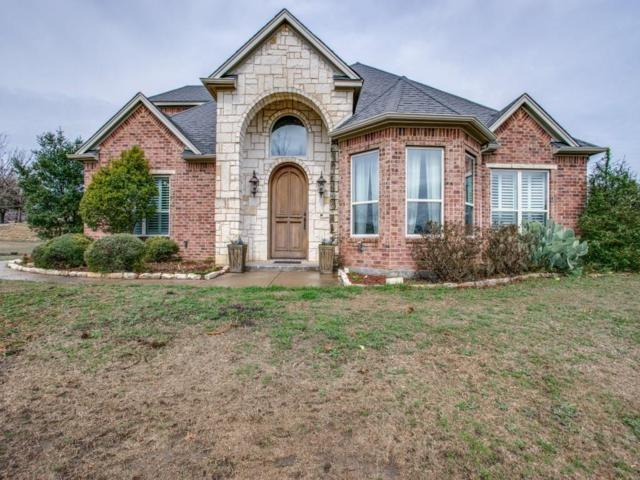 105 Branch Hollow Lane, Aledo, TX 76008 (MLS #13786303) :: Team Hodnett