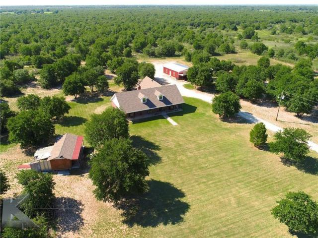 11410 County Road 335 Road, Hawley, TX 79525 (MLS #13787112) :: Team Tiller