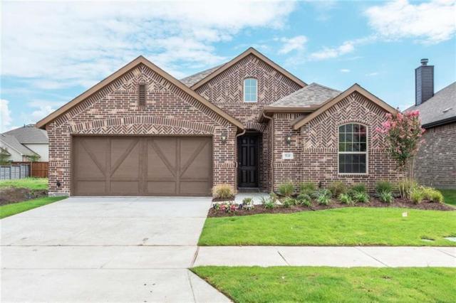 5120 Shallow Pond Drive, Little Elm, TX 76227 (MLS #13797589) :: RE/MAX Landmark