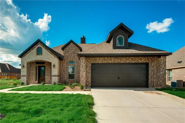 415 Foxtail Court, Waxahachie, TX 75165 (MLS #13810421) :: Magnolia Realty