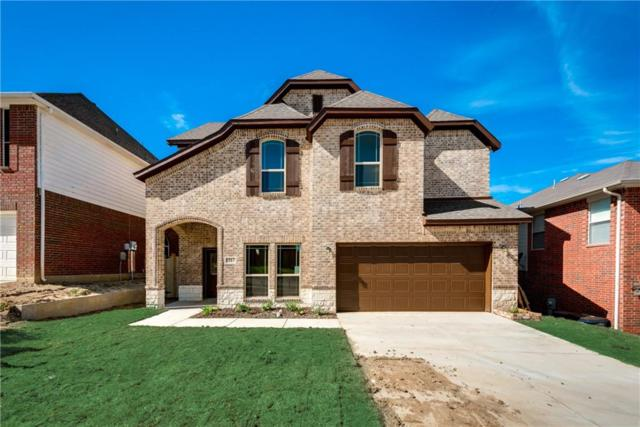 5967 Wisdom Creek Drive, Dallas, TX 75249 (MLS #13813304) :: Magnolia Realty