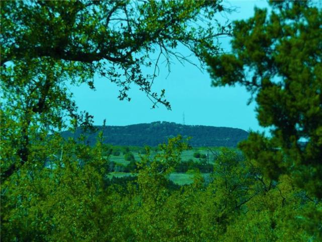 1100 Spyglass Drive, Possum Kingdom Lake, TX 76449 (MLS #13841436) :: The Chad Smith Team