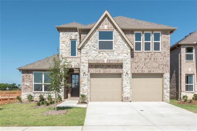 1416 Frisco Hills Boulevard, Little Elm, TX 75068 (MLS #13841646) :: The Chad Smith Team