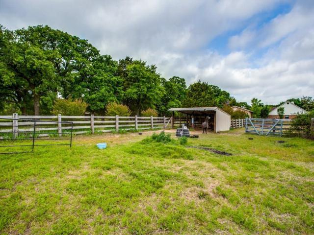 TBD Shady Shores, Shady Shores, TX 76208 (MLS #13844582) :: North Texas Team | RE/MAX Lifestyle Property