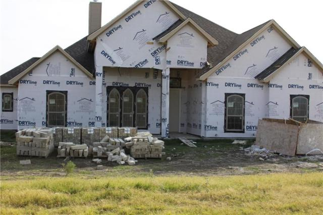 321 Palo Alto Drive, Springtown, TX 76082 (MLS #13861993) :: Team Hodnett
