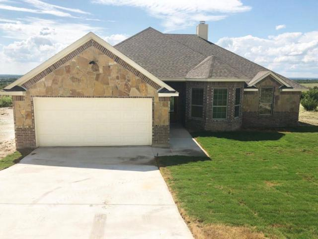 220 Timber Valley Court, Weatherford, TX 76085 (MLS #13863456) :: The Heyl Group at Keller Williams