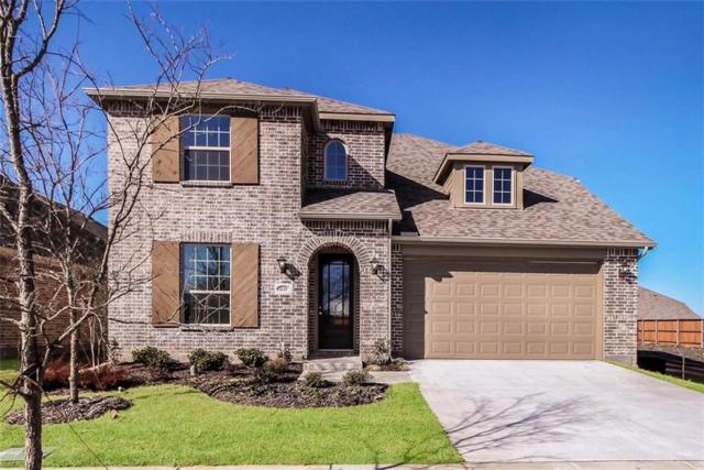 4135 Starlight Creek Drive, Celina, TX 75009 (MLS #13910093) :: Real Estate By Design