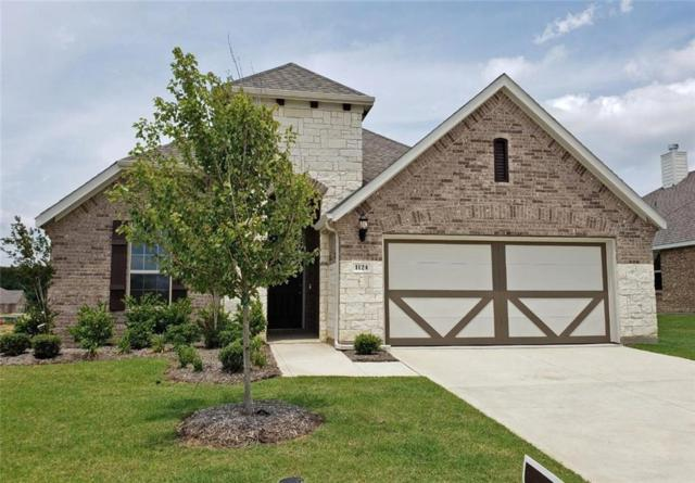 1124 Diamond Dove Drive, Little Elm, TX 75068 (MLS #13916317) :: Baldree Home Team