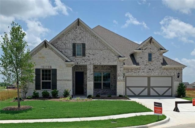 1637 Yellowstone Drive, Forney, TX 75126 (MLS #13943654) :: RE/MAX Town & Country