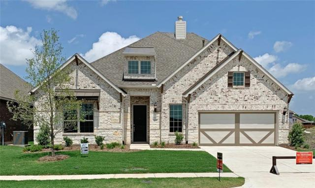 1256 Lawnview Drive, Forney, TX 75126 (MLS #13943697) :: RE/MAX Town & Country