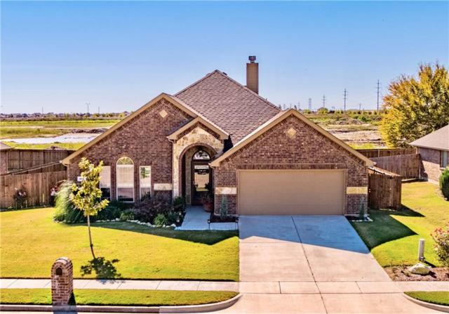 204 Hedgewood Drive, Waxahachie, TX 75165 (MLS #13964477) :: RE/MAX Town & Country
