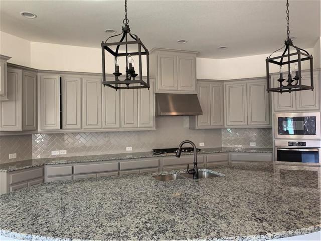 241 Fawn Mist, Prosper, TX 75078 (MLS #13981189) :: Real Estate By Design