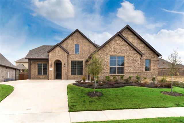 934 Amber Knoll Drive, Rockwall, TX 75087 (MLS #13987526) :: Kimberly Davis & Associates