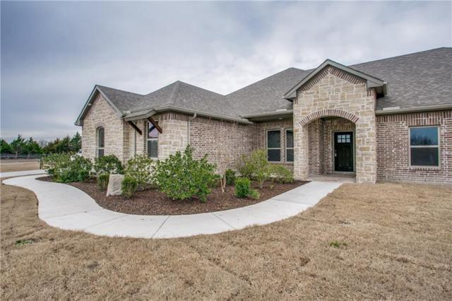 1519 Canales Trail, Farmersville, TX 75442 (MLS #13989012) :: RE/MAX Town & Country