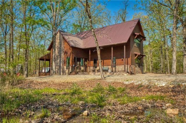 89 Bass Loop Road, Broken Bow, OK 74728 (MLS #14018687) :: Kimberly Davis & Associates