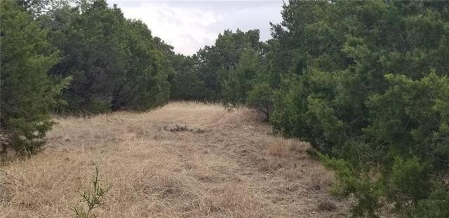 TBD 5 Loma Alto Court, Granbury, TX 76048 (MLS #14019145) :: The Heyl Group at Keller Williams