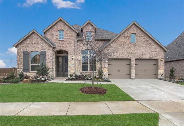 16208 Cullen Park Way, Prosper, TX 75078 (MLS #14029501) :: Kimberly Davis & Associates