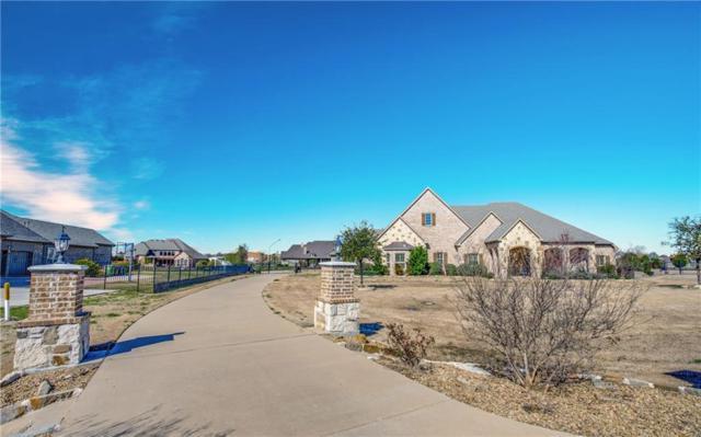 421 Hunt Drive, Lucas, TX 75002 (MLS #14033271) :: The Daniel Team