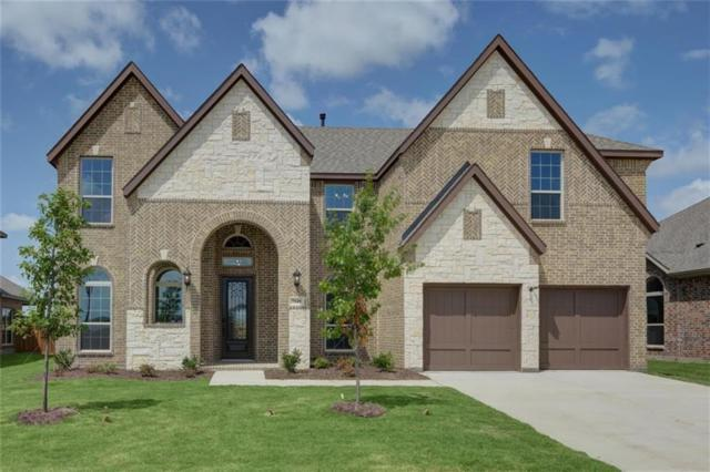 7148 Costa De Oro Lane, Grand Prairie, TX 75054 (MLS #14072102) :: The Tierny Jordan Network