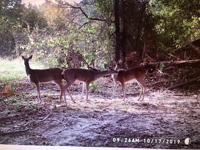 0000 County Road 2383, Pickton, TX 75471 (MLS #14178223) :: Team Hodnett