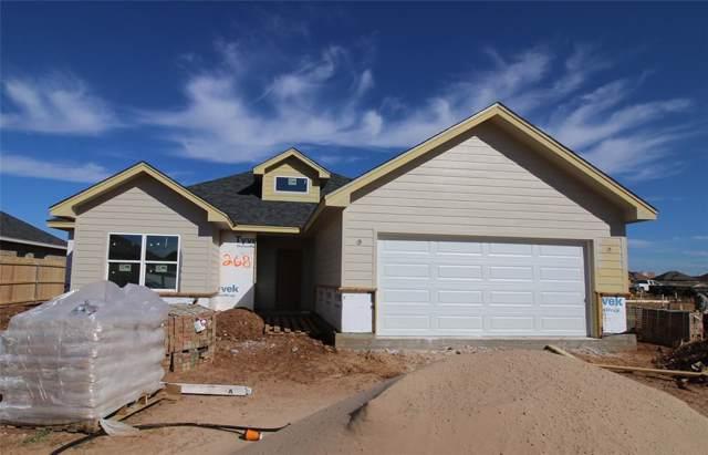 268 Sophia Lane, Abilene, TX 79602 (MLS #14191877) :: Ann Carr Real Estate