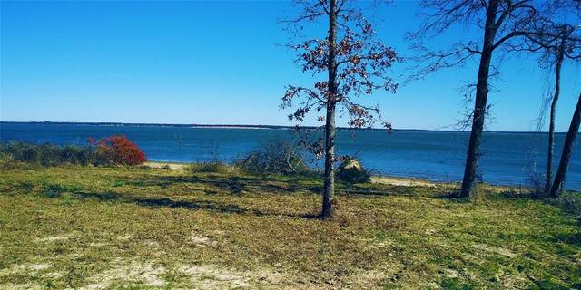 8983 Southern Shore Court, Kemp, TX 75143 (MLS #14253507) :: The Hornburg Real Estate Group