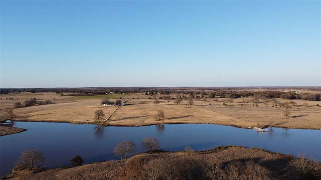 445 Survey Road, Whitesboro, TX 76273 (MLS #14276257) :: Lynn Wilson with Keller Williams DFW/Southlake