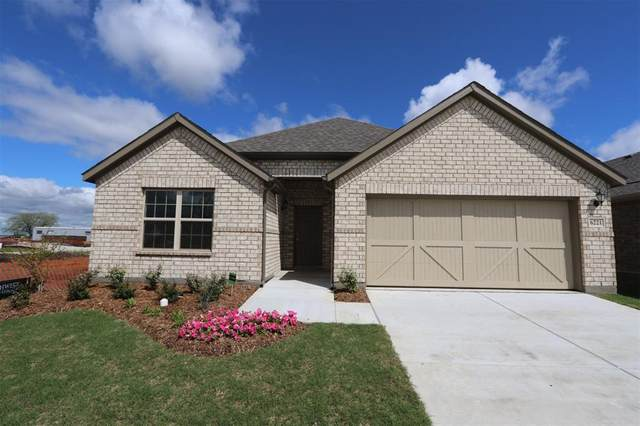 6221 Looms Court, Celina, TX 75009 (MLS #14283376) :: Real Estate By Design