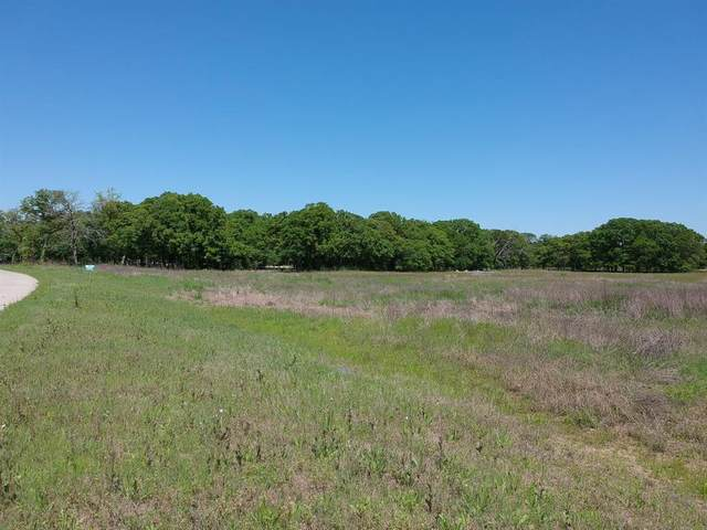 Lot 15 Dominion Drive, Royse City, TX 75189 (MLS #14319626) :: Potts Realty Group