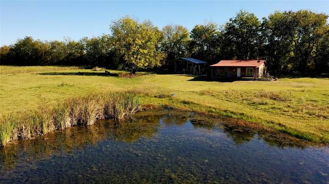730 County Road 3210, Annona, TX 75550 (MLS #14383600) :: The Kimberly Davis Group