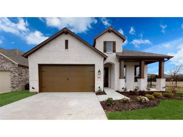 2813 Black Walnut St, Mckinney, TX 75071 (MLS #14458751) :: Feller Realty