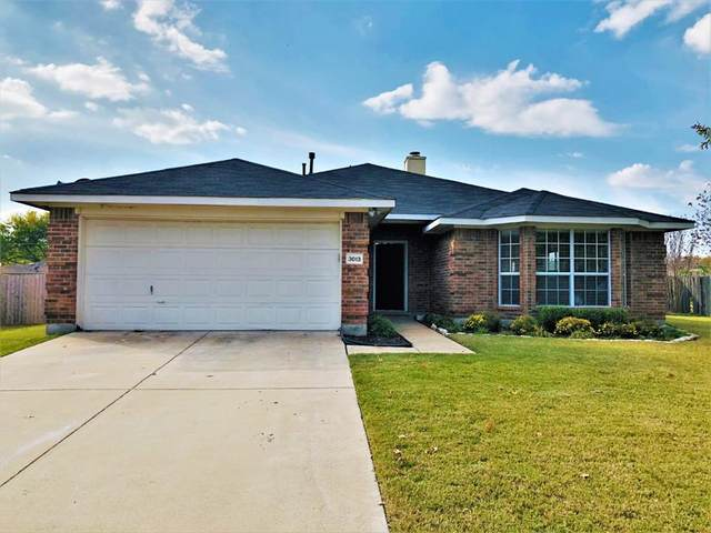 3013 Dorothy Lane, Glenn Heights, TX 75154 (MLS #14459913) :: The Paula Jones Team   RE/MAX of Abilene