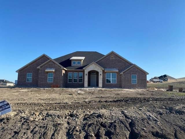 4010 Rockbridge Drive, Weatherford, TX 76085 (MLS #14508157) :: Potts Realty Group