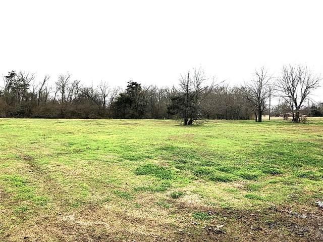 301 Daniels Street, Terrell, TX 75160 (MLS #14520981) :: The Hornburg Real Estate Group