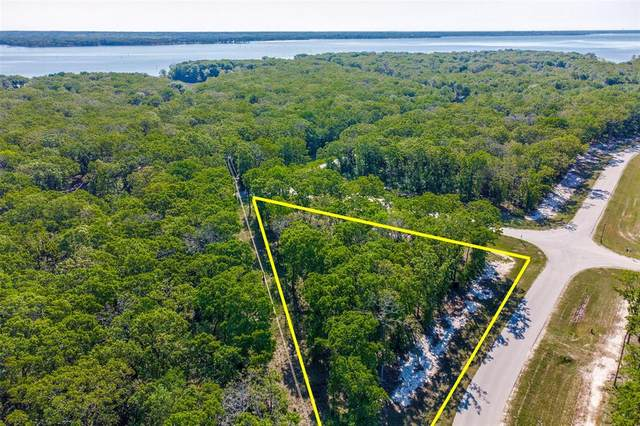 1 Vintage Shore Drive, Quinlan, TX 75474 (MLS #14524770) :: The Hornburg Real Estate Group