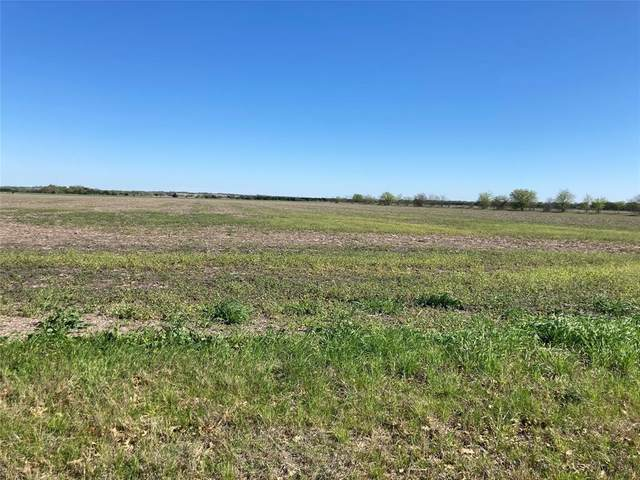 TBD #1 Hampel Road, Palmer, TX 75152 (MLS #14541917) :: The Hornburg Real Estate Group
